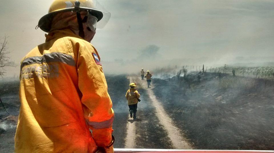 Incendio forestal y de monte en zona rural