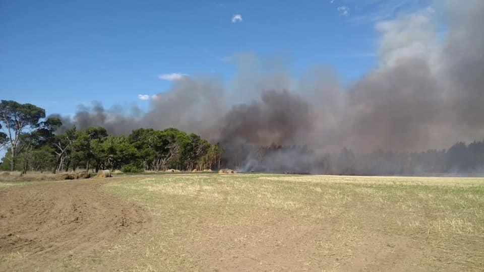 Incendio rural en zona de Quenuma